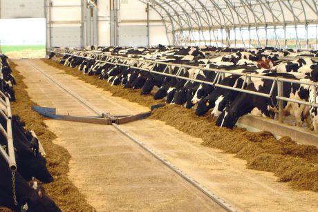 FeedMax Dairymaster