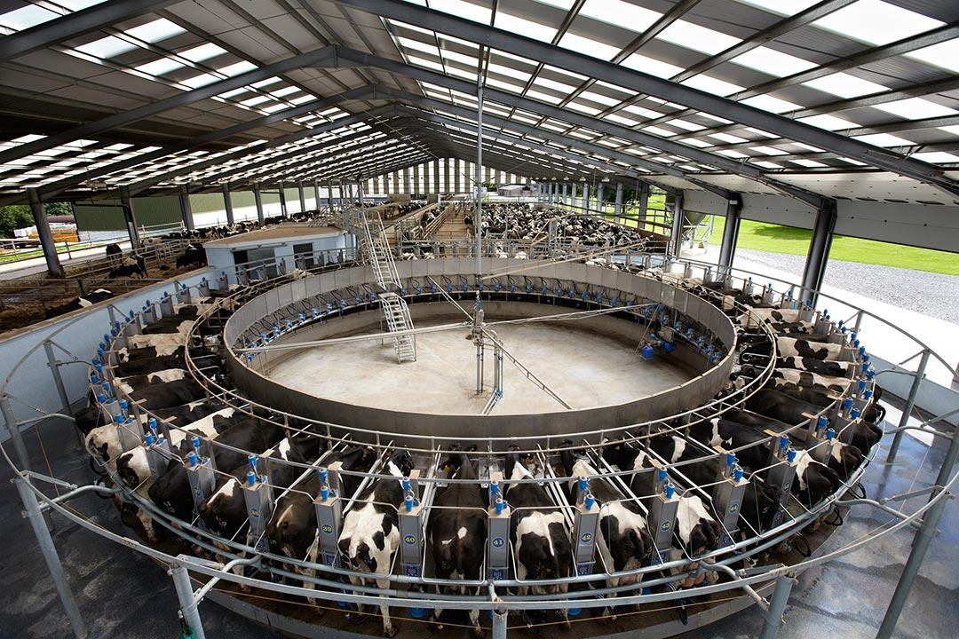 Plnoautomatická kruhová dojáreň Dairymaster